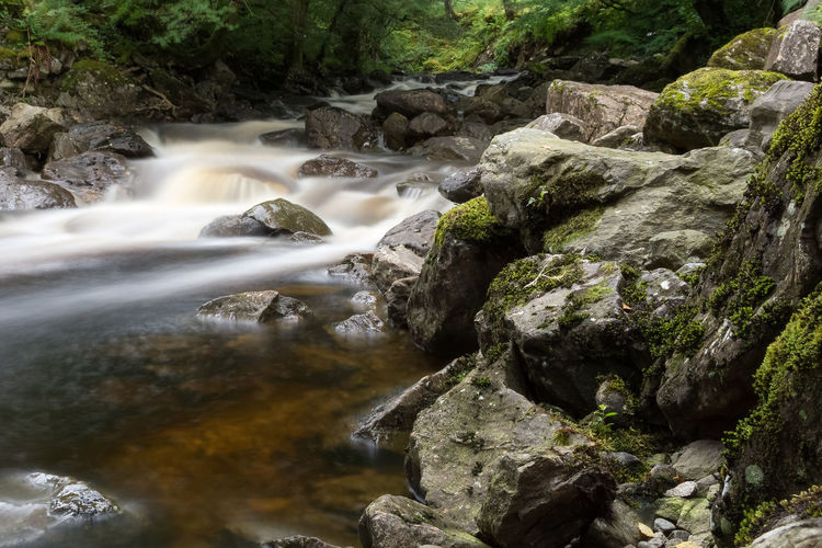 The river Falloch Rock Water Long Exposure Rock - Object Flowing Water Motion Scenics - Nature Solid Beauty In Nature Blurred Motion Tree Nature Waterfall Plant Forest Land No People Flowing Environment Stream - Flowing Water Outdoors Falling Water Power In Nature Running Water Rainforest