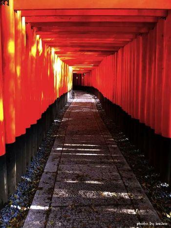 鳥居 伏見稲荷大社 京都 Kyoto Red EyeEm EyeEm Gallery 写真好きな人と繋がりたい Other_kei