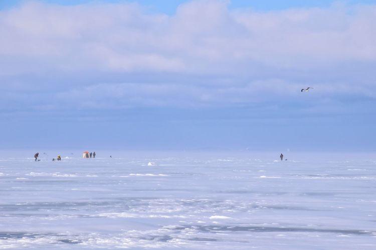 People flying over sea
