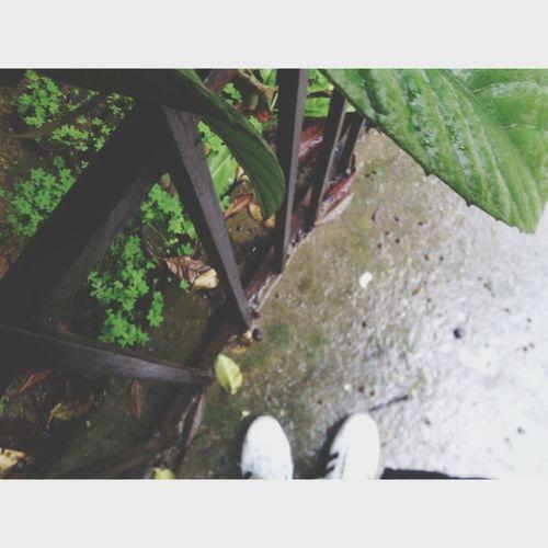 It's rainy day .