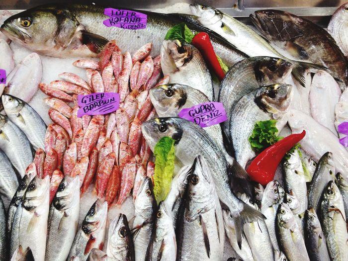 Lüfer kofana - 70 tl : Laos - 80 : barbun - 60 cupura - 30 Çakır Efe Balıkçılık