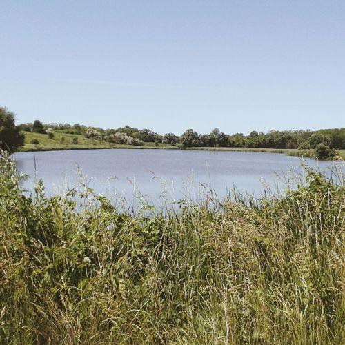 озеро люблю шик Загадка природы грусть пейзаж