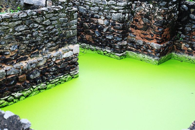 Nature is the greatest artist and he uses time for his magnificent works.. Here an old well and an algae formation over time is magnificent... Old Well Green Algae Old Is Gold Green Texture Nature Over Time Nostalgia Abstract