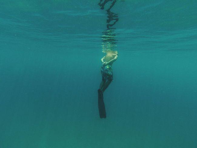 Picturing Individuality Selfportait Portait Seaside Sea Life Sea Bottom Surface Blue Bigblue