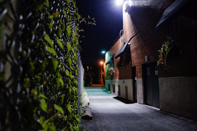 Illuminated Architecture Building Exterior Built Structure Street Light