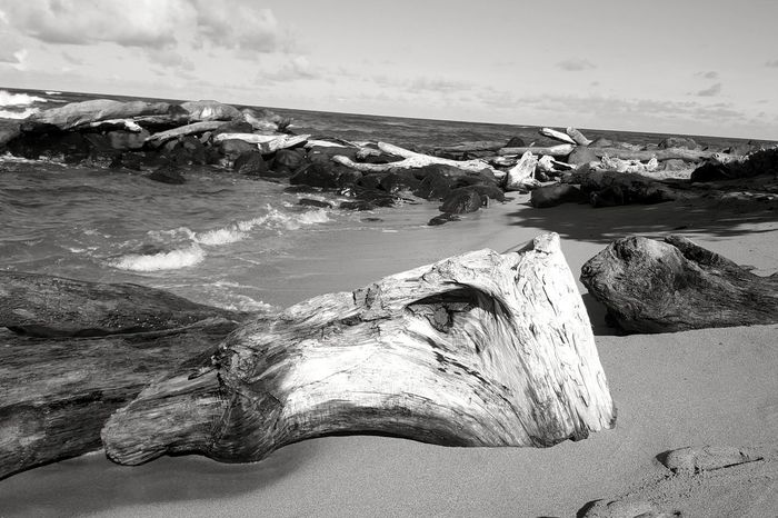 Beach Sea Sand Rock - Object Outdoors Nature No People Travel Destinations Sunlight Landscape Day Horizon Over Water Water Low Tide Postcard Picture Silhouette Tranquil Scene Casting Shadows Backgrounds Black And White Collection  Black & White Photography Black & White Driftwood Rocks And Water