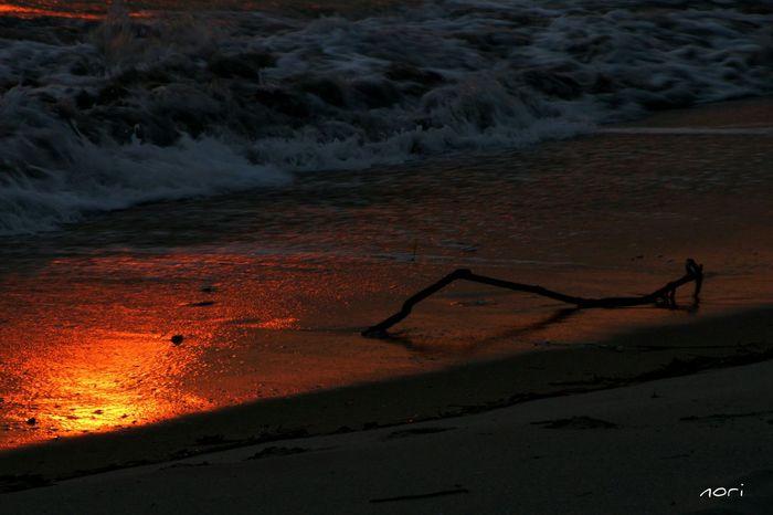 おやすみなさい😊 Good night🌙 夕暮れふぇち Sea_collection Driftwood Sunset Red Sea Water_collection キラキラ Sunset_collection Sunset Silhouettes Kagoshima