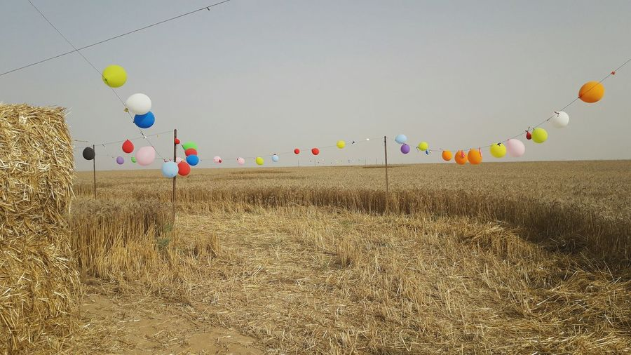Low angle view of balloons flying over field against sky