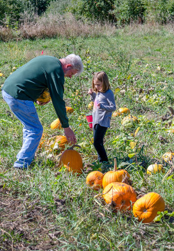 Grandpa and granddaughter  picking out pumpkins