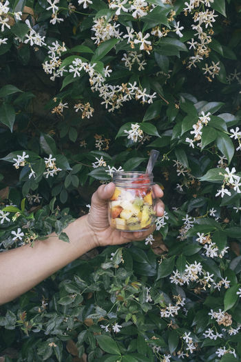 Cropped image of hand holding fruits in jar against flowering plants