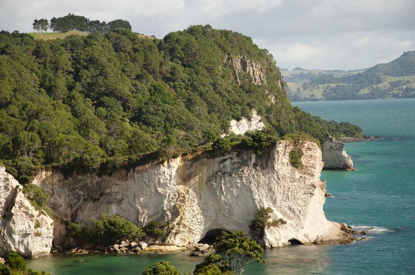 Coromandel Peninsula - New Zealand NZ Cliff Coromandel Coromandel Peninsula Nature New Zealand Rock Formation Water