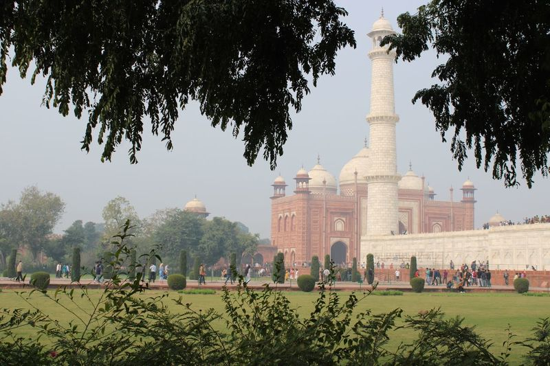 Detail around Taj Mahal Tree Plant Architecture Built Structure Travel Destinations Group Of People Travel