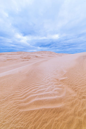 Stunning Te Paki Sand Dunes in Northland Scenic Travel Arid Climate Beauty In Nature Climate Cloud - Sky Day Desert Environment Land Landscape Nature New Zealand No People Outdoors Pattern Remote Sand Sand Dune Scenics - Nature Sky Tranquil Scene Tranquility Travel Destinations