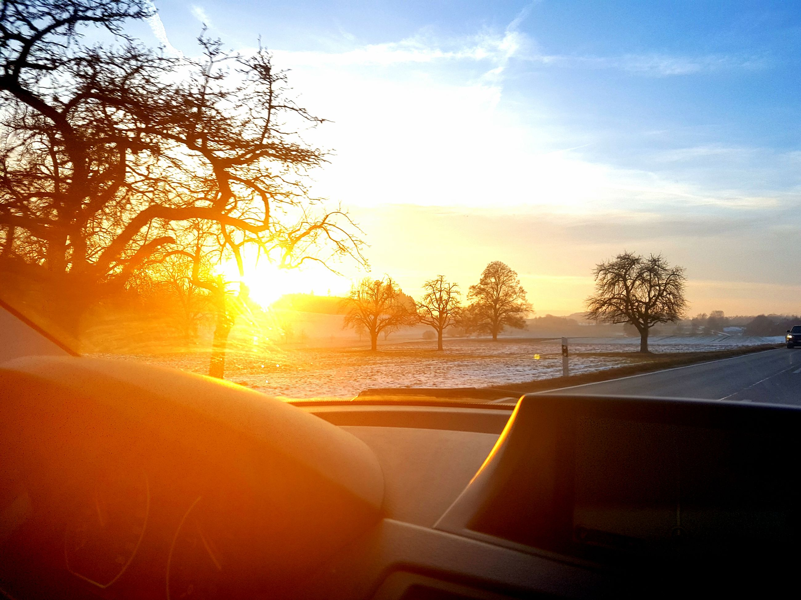 car, sunset, transportation, windshield, travel, car interior, vehicle interior, land vehicle, mode of transport, sky, driving, road, dashboard, car roof, tree, nature, no people, windscreen, beauty in nature, close-up, day, vehicle mirror, outdoors