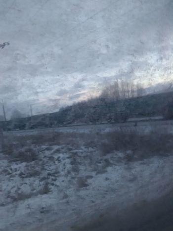 Train Snow ❄ Trip Tree