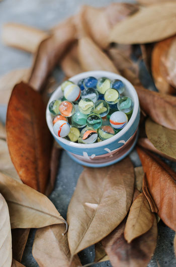 High angle view of marbles in bowl amidst leaves
