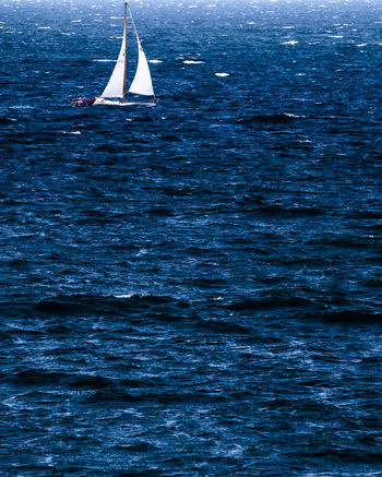 No horizon. Beauty In Nature Blue Canvas Day Mode Of Transportation Motion Nature Nautical Vessel No People Outdoors Sailboat Sailing Scenics - Nature Sea Sport Tranquility Transportation Water Waterfront Wind Yacht Yachting