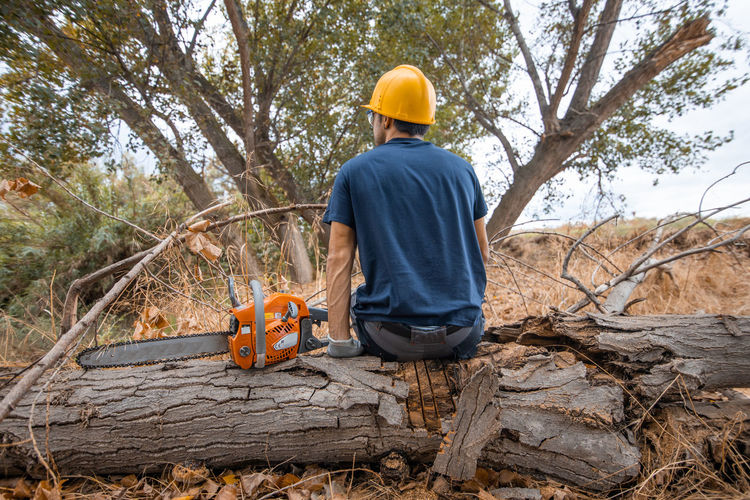 Rear view of man with chainsaw sitting in forest