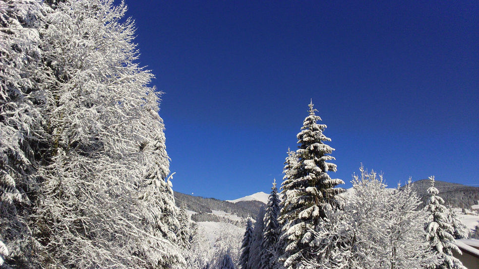 Val Pusteria Frozen Blue Clear Sky Cold Temperature Low Angle View Snow Tranquility White Winter