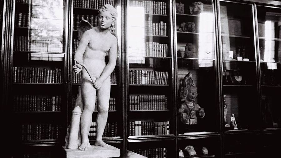 Statue against shelves in library