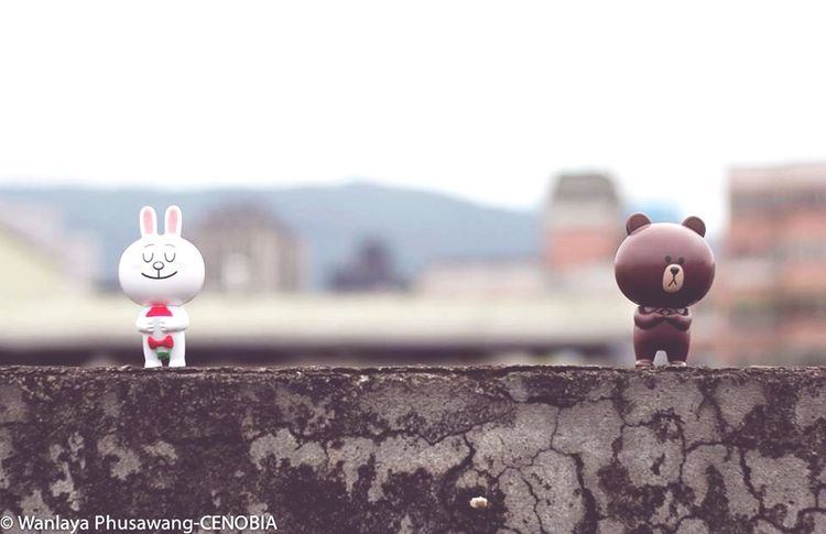 Miss you like crazy Brown Cony LINE