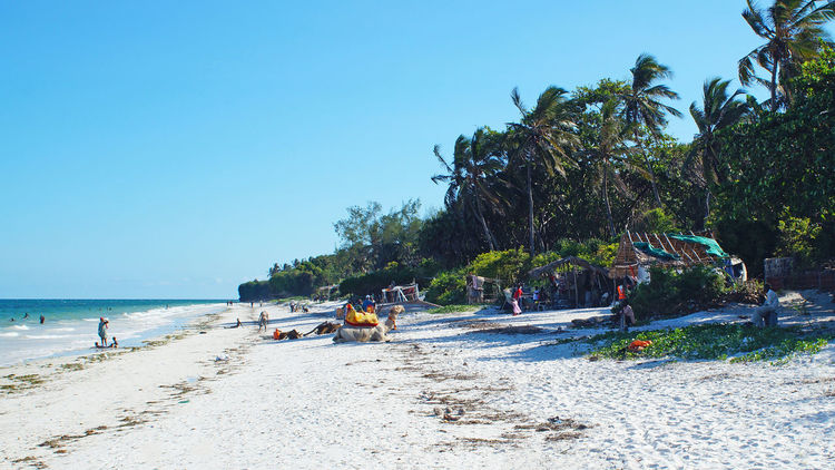 Nyali Beach - Kenia Beach Beach Photography Beachinspector.com Beachphotography Beauty In Nature Clear Sky Day Group Of People Growth Holiday Medium Group Of People Mixed Age Range Outdoors Playa Scenics Sea Summer Summertime Sunlight Sunlight Tourist Tree Vacation Vacations Water