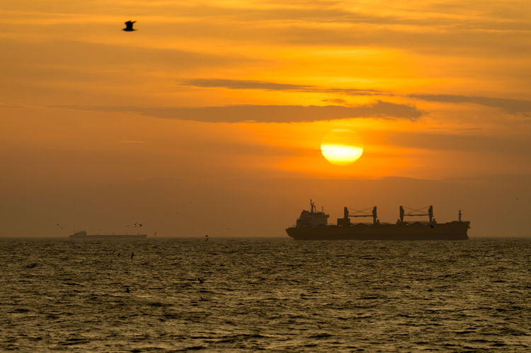 Sunset Watching II Cargo Ship Istanbul Orange Tranquility Beauty In Nature Bird Horizon Over Water Istanbul Turkey Mode Of Transport Nature Nautical Vessel No People Orange Color Outdoors Scenics Sea Seascape Ship Silhouette Sky Sun Sunset Tranquil Scene Transportation Water