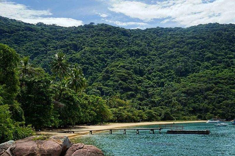 Praia do Pouso, Ilha Grande - RJ. Estou encantado com estes lugares. Acho que demorei muito para ir até lá, para que eu pudesse preparar meu olhar para tanta beleza a ser fotografada. Praiadopouso Muitobom Ilhagrande Belezanatural Velharianãopara Velhariaskateboard