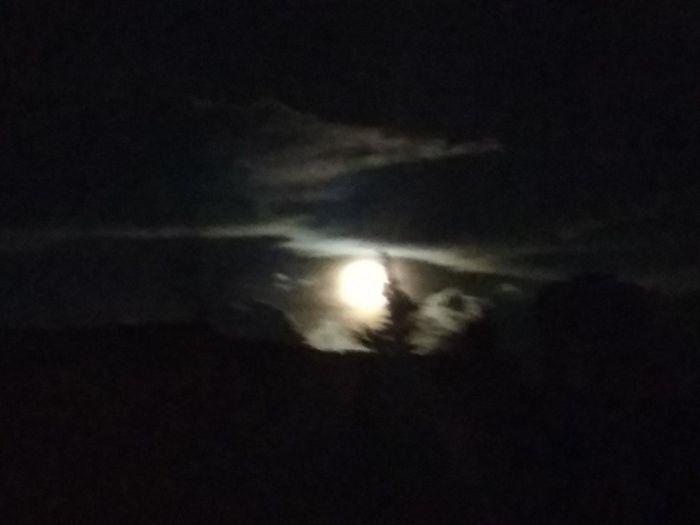 y estando... Comprendí y deseé regresar. Desde aquí.... Entiendo y sin desearlo acepto. Tengo que volver a empezar. Es el proceso de la evolución, vida y muerte son unión. Es el camino a recorrer, hasta llegar a la comprensión. Astronomy Moon Night Space Scenics Nature Crescent Sky No People Natural Phenomenon
