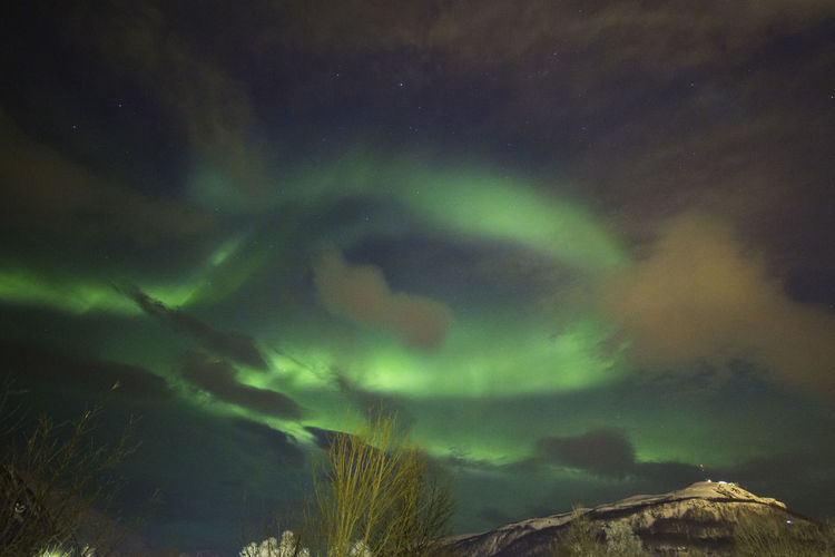 Low angle view of aurora polaris against sky