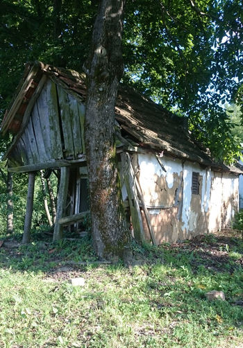 Old wooden structure on grassy field