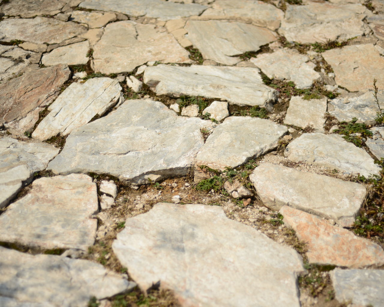 cracked, drought, textured, arid climate, mud, no people, outdoors, backgrounds, rock - object, day, full frame, nature, close-up, puddle, water, landscape