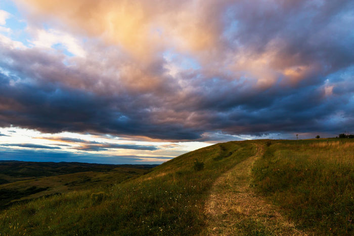 Cloud Cloud - Sky Cloudscape Cloudy Dramatic Sky Field Grass Grassy Horizon Over Land Landscape Nature No People Non Urban Scene Non-urban Scene Outdoors Path Pathway Sky Storm Cloud Tranquil Scene Tranquility