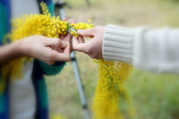 Cropped Hand Of Woman Giving Flower To Friend On Field