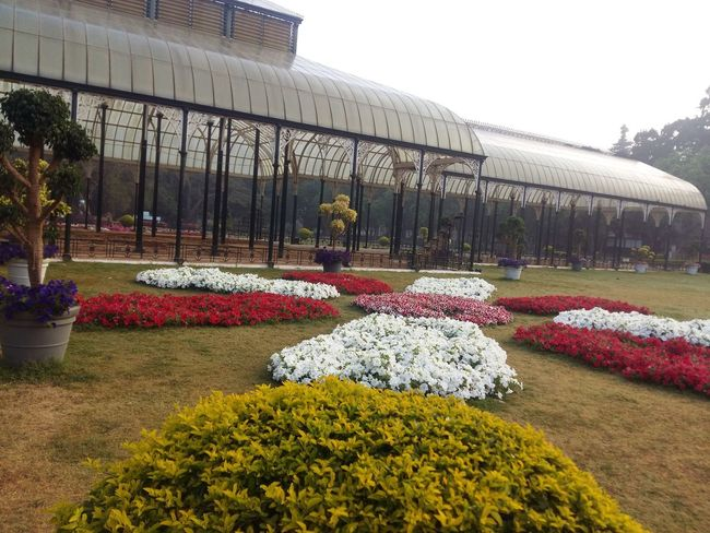 Lalbagh Lalbaghgarden Naturecolors Garden