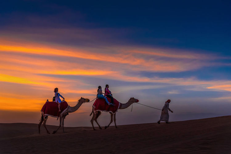 People riding horse on desert against sky during sunset
