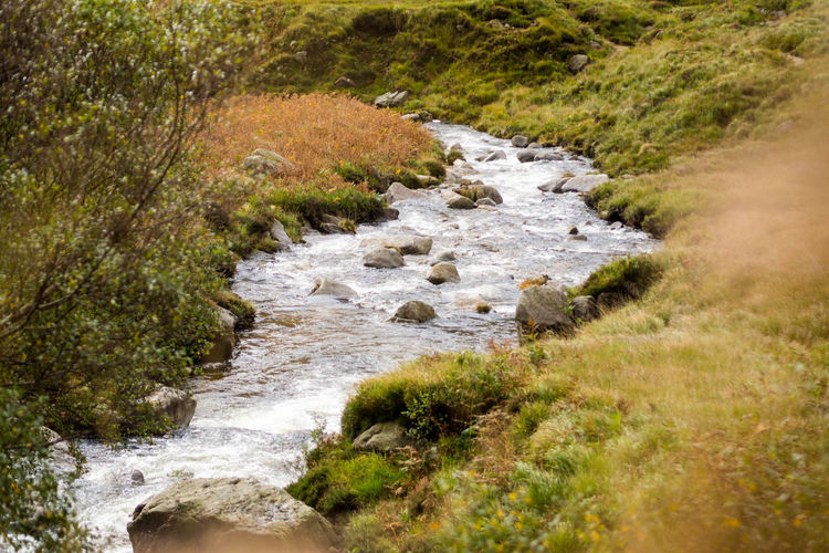 Scenic river in the mountains of isle of arran Autumn Autumn Colors Exploring Hiking Isle Of Arran  Scotland Trekking Beauty In Nature Day Grass Landscape Nature No People Outdoors River Scenics Trail Water