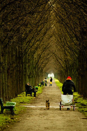 People On Pathway Amidst Bare Trees At Park