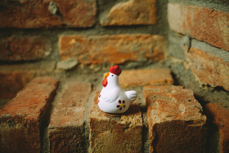 Animal Themes Architecture Bird Brick Wall Building Exterior Built Structure Close-up Day No People Outdoors Red