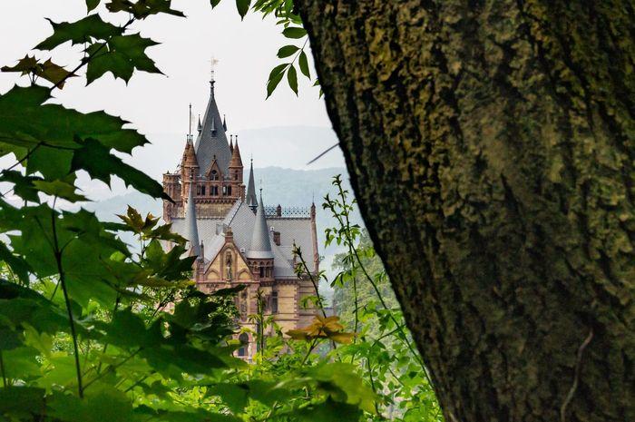 Schloss Drachenburg Königswinter Drachenfels Castle Castle View  Northrhein Westfalia Germany Fairytale Castle Palace