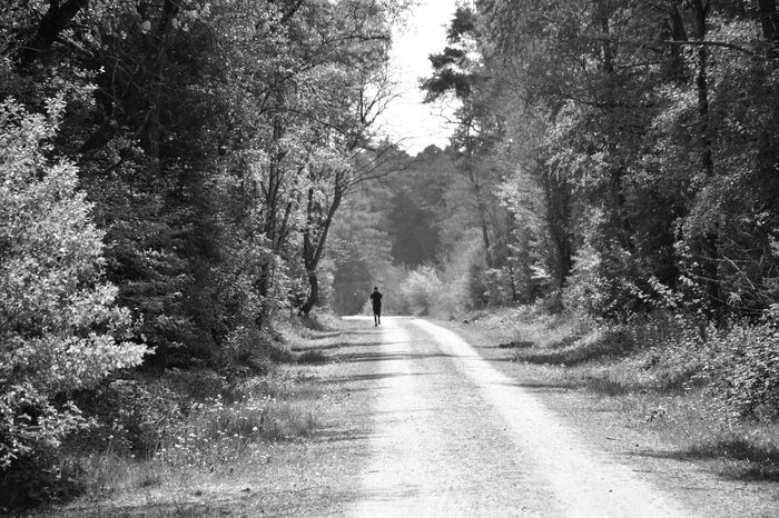 A lonely runner through the forest 3XSPUnity Adventure B&w Beauty In Nature Black & White Blackandwhite Blackandwhite Photography Day Exceptional Photographs EyeEm Forest Full Length Monochrome Monochrome Photography Nature One Person Outdoors People Real People Rear View Road TCPM The Way Forward Tree Walking