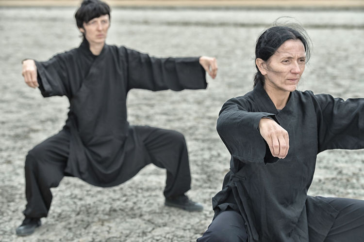People practicing martial arts on land