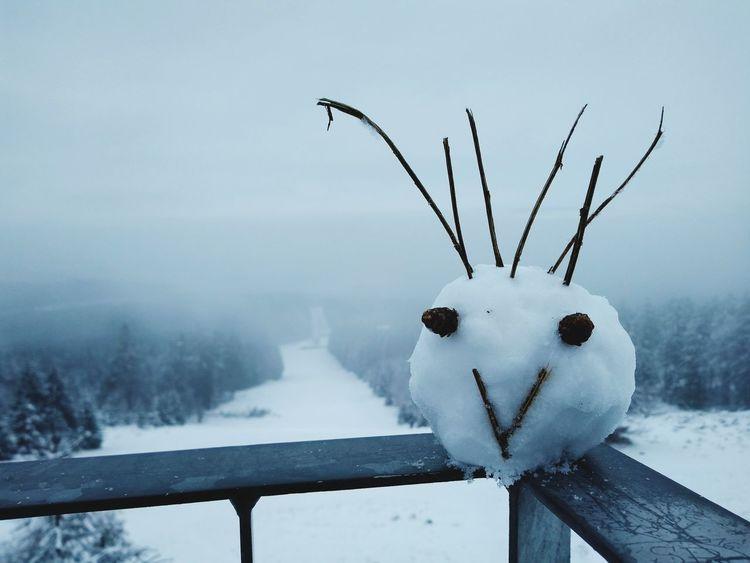 Erbeskopf Hunsrück Rhineland-palatinate Rheinland-Pfalz  Mountain Art Snowart Snowface Snow Winter Cold Temperature Snowman Snowing Frost Frozen Owl Snowflake