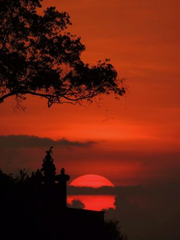 Red Sunset Sun Sunset Orange Sky Red Sky Red Sky At Sunset Before Dark Cliff Ocean Ocean View Baliphotography Bali, Indonesia Trees And Water Bali Beach Bali Sunset Outdoor Photography Tree Astronomy Sunset Silhouette Red Astrology Sign Sky Landscape Romantic Sky Moody Sky Stratosphere Dramatic Landscape Dramatic Sky Majestic Atmospheric Mood