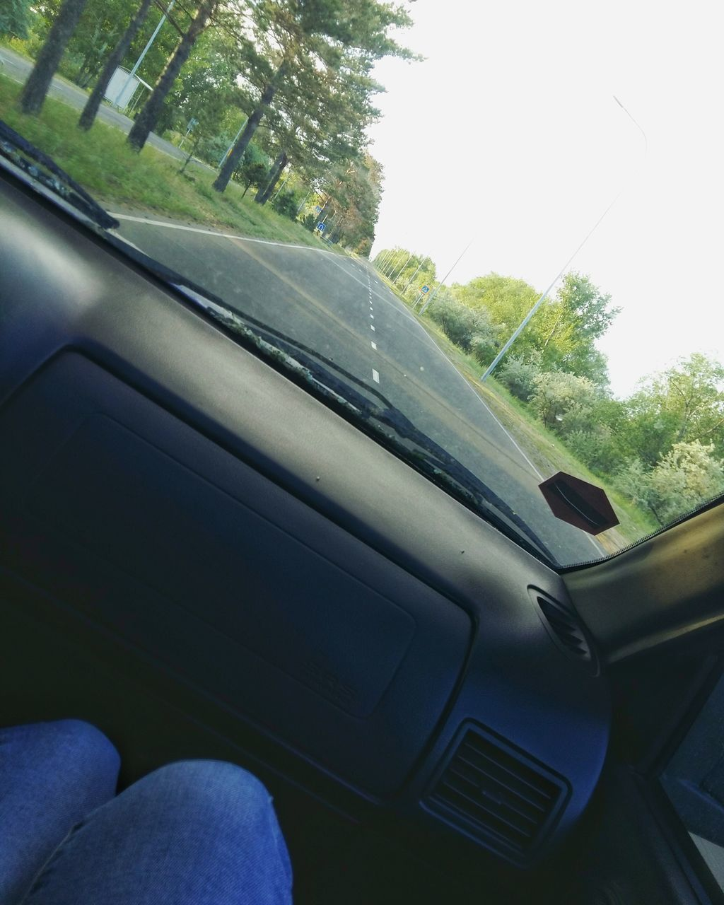 car, car interior, land vehicle, vehicle interior, transportation, windshield, mode of transport, tree, day, window, dashboard, no people, close-up, nature, indoors, sky