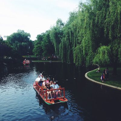 Boat Boston Bostonpublicgarden Canal Lake Lakeshore Mode Of Transport Moored Nautical Vessel Outdoors Recreational Pursuit Reflection Relaxing Moments River Standing Water Swanboat Transportation Tree Trip Vacations Water Waterfront Weekend Activities