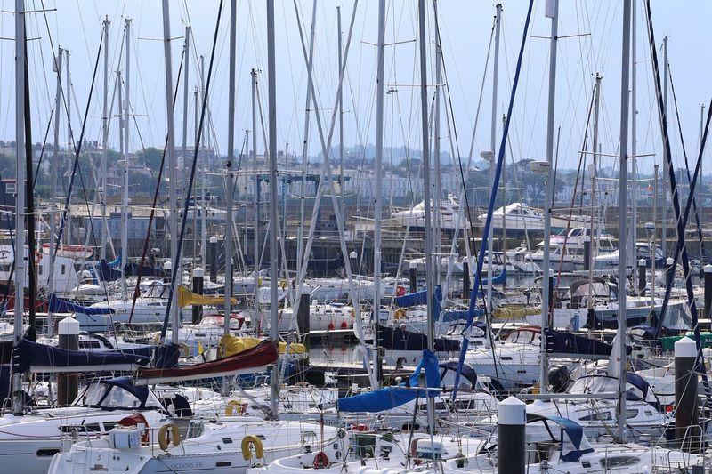 Sailboats moored at harbor during sunny day