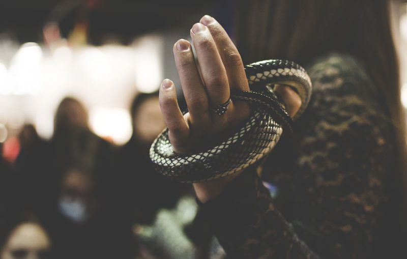 Close-Up Of Woman Hand Holding Snake