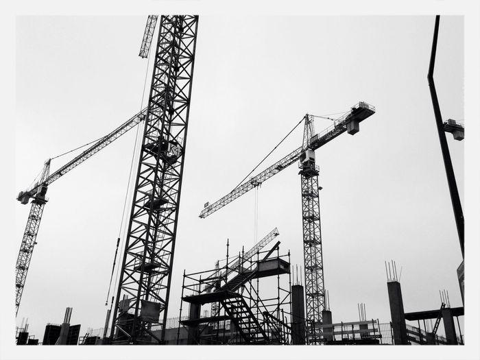 #Cranespotting