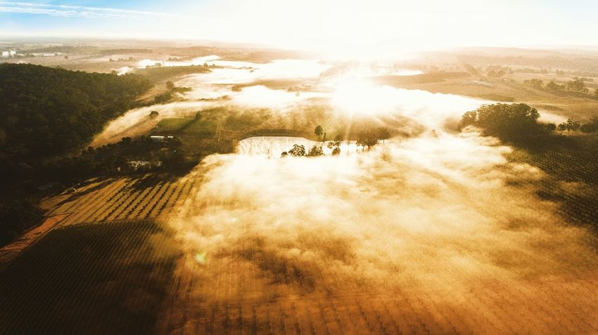 Easters stunning foggy morning in Margaret River. Drone  Dronephotography Australia Winefields Fog EyeEm Selects Flying Aerial View Air Vehicle Agriculture Extreme Sports Mountain Sky Landscape Drone  Foggy